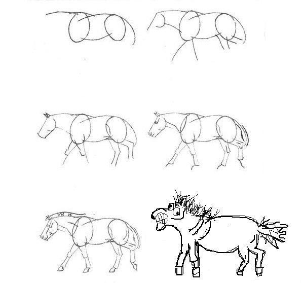 Cum ar arata calul tau? Stanga sau dreapta?